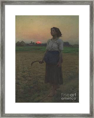 The Song Of The Lark Framed Print by Jules Breton