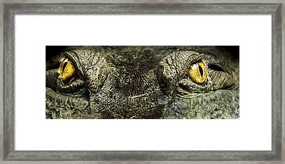 The Soul Searcher Framed Print by Paul Neville