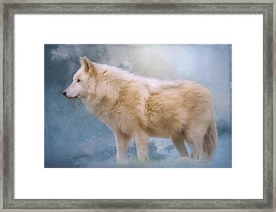 The Spirit Within - Arctic Wolf Art Framed Print by Jordan Blackstone