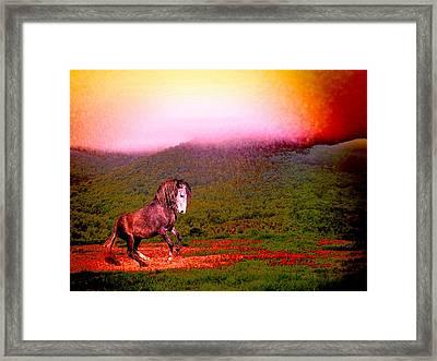The Stallion Has Faith Framed Print by Patricia Keller