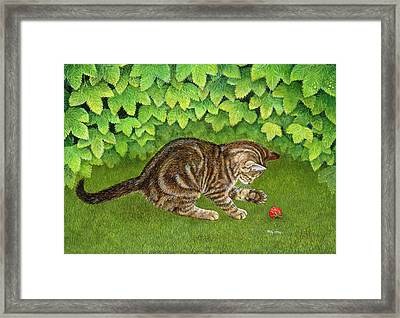 The Strawberry Kitten Framed Print by Ditz