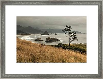 The Subtle Elegance Of The Oregon Coast - 1 Framed Print by Hany Jadaa Prince John Photography
