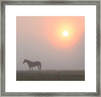 The Sun Burning Through The Fog In Whitemarsh Framed Print by Bill Cannon