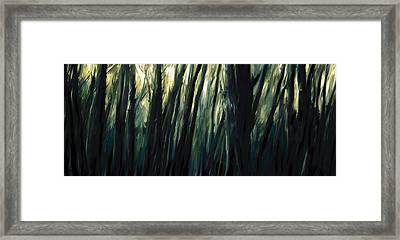 The Sundarbans, 2009 Framed Print by Rabi Khan