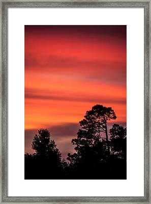 The Sun's Final Hoorah Framed Print by Shelby  Young