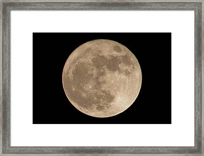 The Supermoon From November 14th, 2016 Framed Print by Loriental Photography