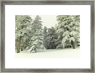 The Sweep Of Snow Framed Print by Jeff Swan