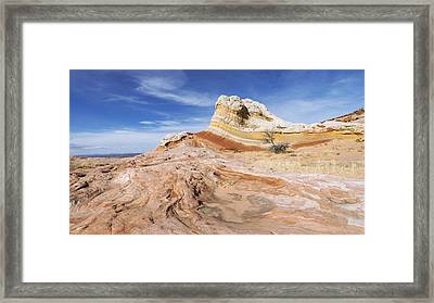 The Swirl Framed Print by Chad Dutson
