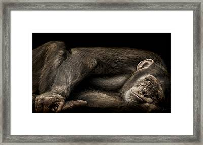 The Teenager Framed Print by Paul Neville