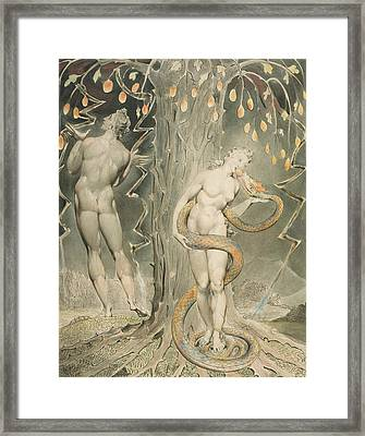 The Temptation And Fall Of Eve Framed Print by William Blake