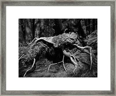 The Thing Framed Print by Wim Lanclus