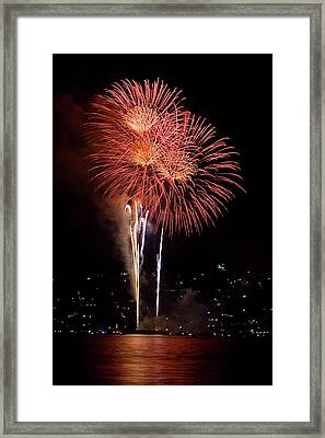 The Three Daisies Framed Print by David Patterson