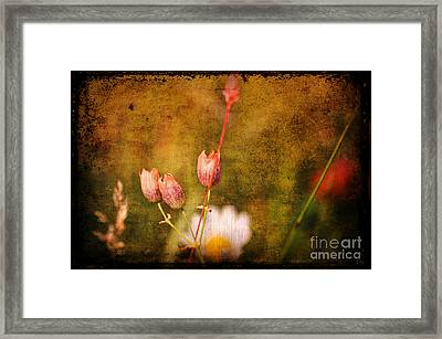 The Three Of Us Framed Print by Silvia Ganora