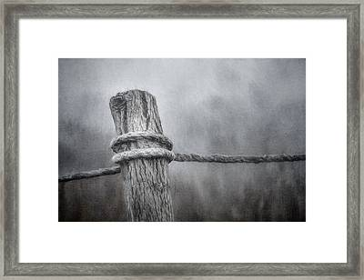 The Tie That Binds Framed Print by Scott Norris