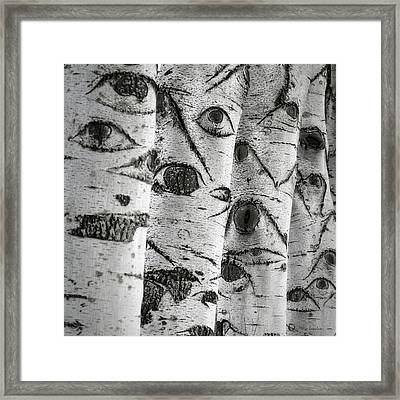 The Trees Have Eyes Framed Print by Wim Lanclus
