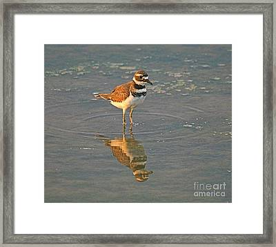 The Two Of Me Framed Print by Robert Pearson