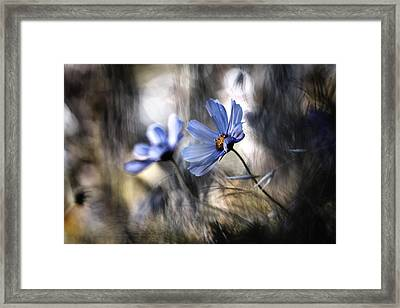 The Two Of Us Framed Print by Fabien Bravin