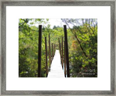 The Uncertain Path Framed Print by Mim White