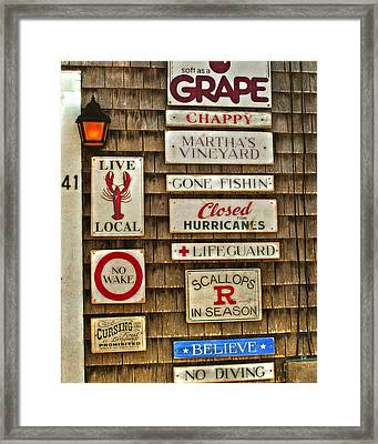 The Vineyard Framed Print by Joann Vitali