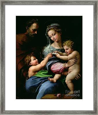 The Virgin Of The Rose Framed Print by Raphael