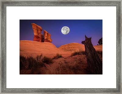 The Watcher Framed Print by Edgars Erglis