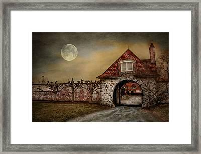 The Watcher Framed Print by Robin-lee Vieira