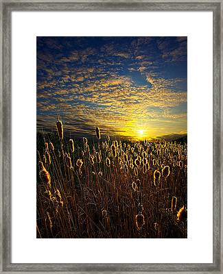 The Watchers Framed Print by Phil Koch
