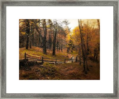 The Way Framed Print by Jessica Jenney