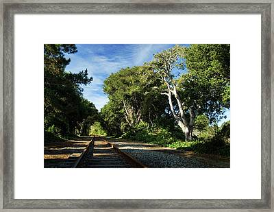The Way Framed Print by Wayne Stadler