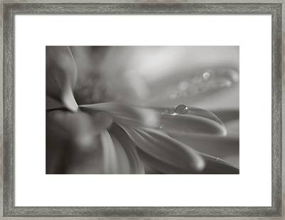 The Way Your Eyes Sparkle Framed Print by Laurie Search