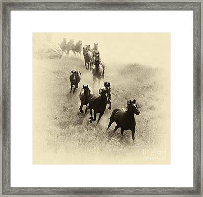 The Wild Bunch 1 Framed Print by Bob Christopher