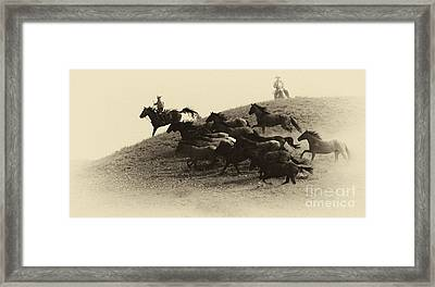 The Wild Bunch 3 Framed Print by Bob Christopher