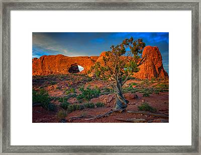 The Windows Framed Print by Rick Berk