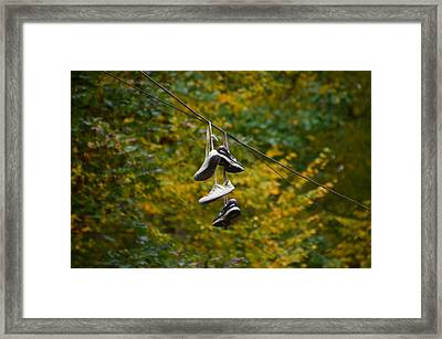 The Wire Framed Print by Bill Cannon
