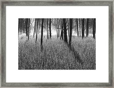 The Wrath Framed Print by Mark Kiver