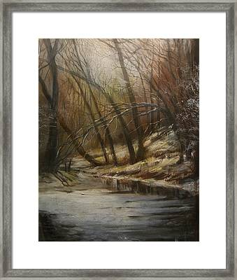 Thin Ice Framed Print by Tom Shropshire