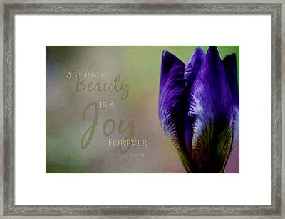Thing Of Beauty Framed Print by Bonnie Bruno