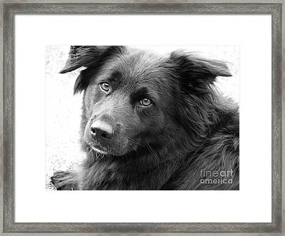 Thinking Framed Print by Amanda Barcon