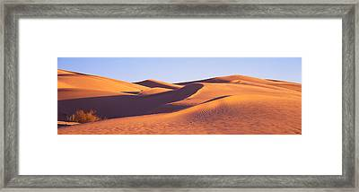 This Is Great Sand Dunes National Park Framed Print by Panoramic Images