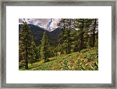 This Is Washington State No.1 - Klipchuck Framed Print by Paul W Sharpe Aka Wizard of Wonders