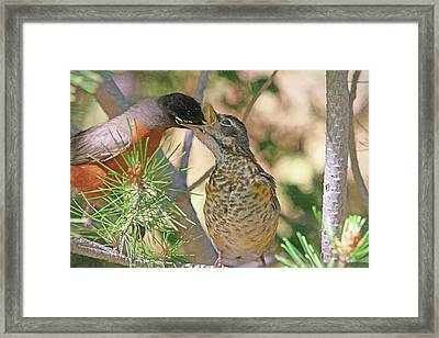This Ones For You Framed Print by Donna Kennedy