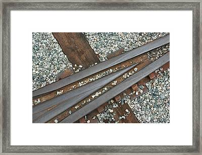 This Way Framed Print by Dan Holm