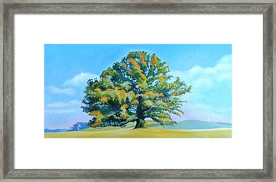 Thomas Jefferson's White Oak Tree On The Way To James Madison's For Afternoon Tea Framed Print by Catherine Twomey