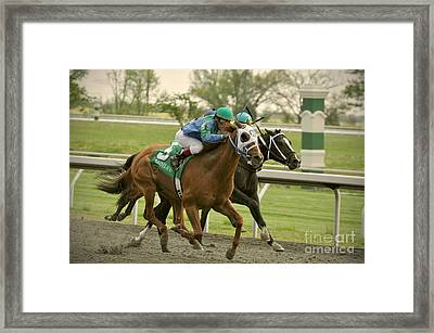 Thoroughbred Racing Framed Print by Samantha Windham