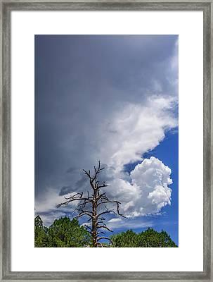 Threatening Skies Framed Print by Daniel Dean