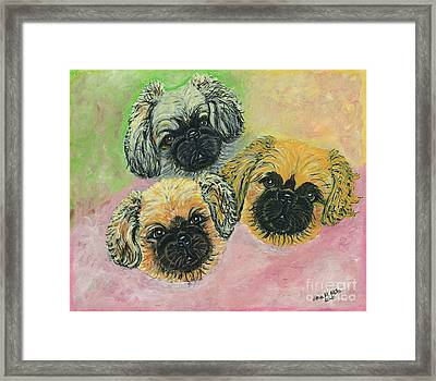 Three Amigos Framed Print by Ania M Milo