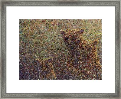 Three Bears Framed Print by James W Johnson