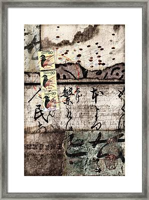 Three Bird Night Collage Framed Print by Carol Leigh