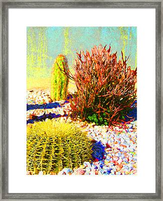 Three Cacti Framed Print by Amy Vangsgard