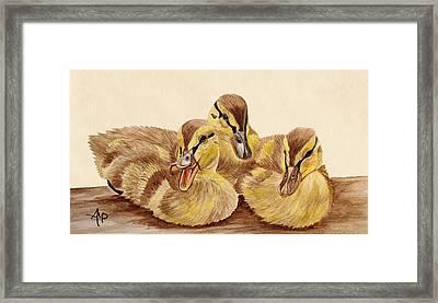 Three Ducklings Framed Print by Angeles M Pomata